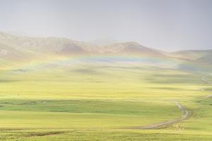 Rainbow over the green Mongolian steppe, Ovorkhangai province, Mongolia, Central Asia, Asia by Francesco Vaninetti