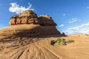 Rock formation on the way to Delicate Arch, Arches National Park, Moab, Grand County, Utah, United  by Francesco Vaninetti