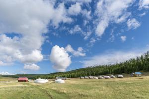 Tourist ger camp, Burentogtokh district, Hovsgol province, Mongolia, Central Asia, Asia by Francesco Vaninetti