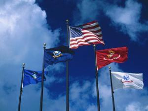 Flags of US Army, Navy, Marines, and Coast Guard by Francie Manning