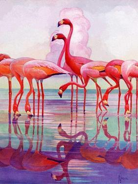 """""""Pink Flamingos,""""January 29, 1938 by Francis Lee Jaques"""
