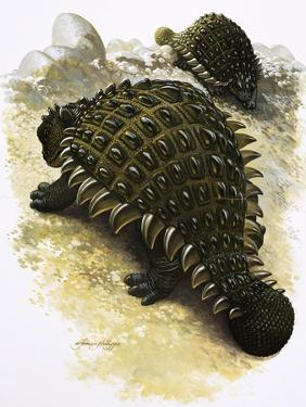 Ankylosaurus by Francis Phillipps