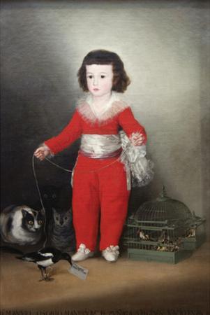 Manuel Osorio Manrique De Zuñiga, a Child with His Pets by Francisco de Goya