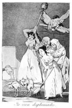There They Go, Plucked, 1799 by Francisco de Goya