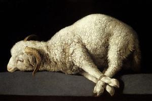 Agnus Dei (The Lamb of God), 1635-1640 by Francisco de Zurbaran