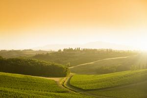 Chianti Region Hills at Sunset in Tuscany - Italy by franckreporter