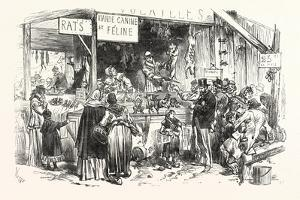 Franco-Prussian War: on the Market of St. Germain. at the Dogs and Cats Butcher. Fresh Rats