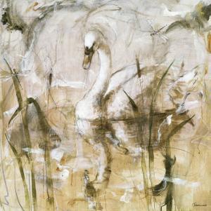 Graceful Melody by Francois Fressinier