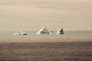 Icebergs in Greenland by Françoise Gaujour