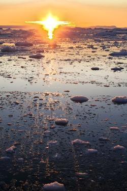 Sunset on the Arctic Ocean, Greenland by Françoise Gaujour