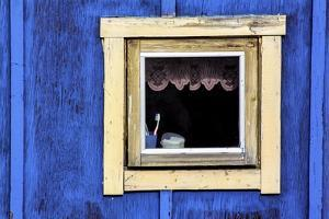 Window from a Chalet in the Village Ilulissat, Greenland by Françoise Gaujour
