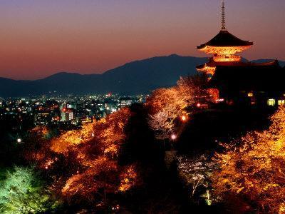 Main Hall, Sakura Trees and Pagoda Lit Up at Night at Kiyomizu-Dera Temple, Kyoto, Japan