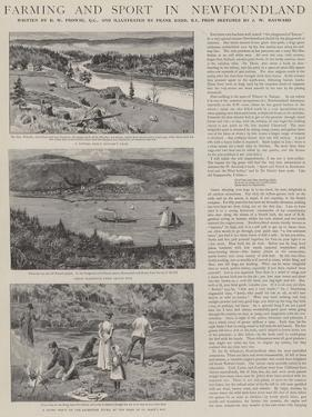 Farming and Sport in Newfoundland by Frank Dadd
