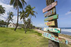 Beach, Bathsheba, St. Joseph, Barbados, West Indies, Caribbean, Central America by Frank Fell