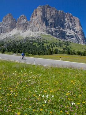 Cyclist and Sassolungo Group, Sella Pass, Trento and Bolzano Provinces, Italian Dolomites, Italy by Frank Fell