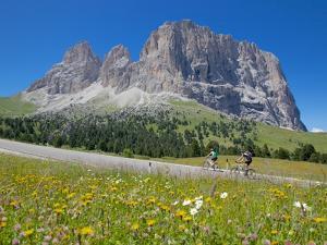 Cyclists and Sassolungo Group, Sella Pass, Trento and Bolzano Provinces, Italian Dolomites, Italy by Frank Fell