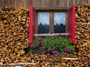 Firewood, Vigo di Fassa, Fassa Valley, Trento Province, Trentino-Alto Adige/South Tyrol, Italy by Frank Fell