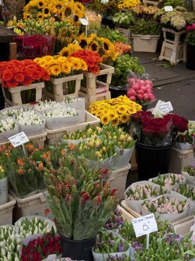 Flower Stall, Bloemenmarkt, Amsterdam, Holland, Europe by Frank Fell