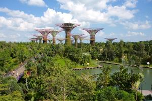Gardens by the Bay, Singapore, Southeast Asia by Frank Fell