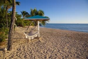 Hammock, Turner's Beach, St. Mary, Antigua, Leeward Islands by Frank Fell