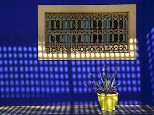 Majorelle Gardens, Marrakesh, Morocco, North Africa, Africa by Frank Fell