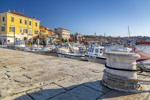 View of harbour and the old town, Rovinj, Istria, Croatia by Frank Fell