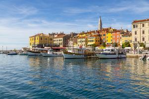 View of harbour and the old town with the Cathedral of St. Euphemia, Rovinj, Istria, Croatia by Frank Fell