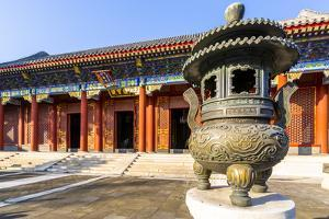 View of ornate buildings in The Summer Palace, Beijing by Frank Fell