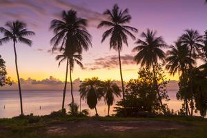 West Coast sunset, St. James, Barbados, West Indies, Caribbean, Central America by Frank Fell