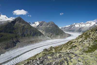 Aletsch Glacier, Eggishorn, Fiesch, Switzerland, Valais