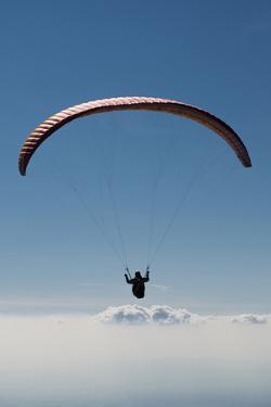 Paraglider Above the Clouds, Aviation, Paraglider, Paragliding, Paragliding by Frank Fleischmann