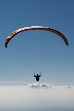 Paraglider Above the Clouds, Aviation, Paraglider, Paragliding, Paragliding by Frank Fleischmann