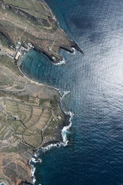 Tenerife, El Puertito, La Caleta, Costa Adeje, Volcano Coast by Frank Fleischmann
