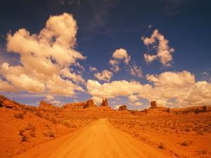 Road and sandstone formations, Valley of the Gods, Arizona, USA by Frank Krahmer