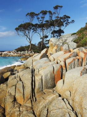 Rocky Coastline at Bay of Fires by Frank Krahmer