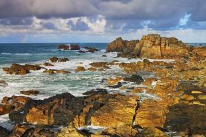 Rocky Coastline near Plougrescant, Cote De Granit Rose, Cote D'armor, Brittany, France by Frank Krahmer