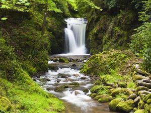 Geroldsauer Waterfall in Grobbach Valley in the Black Forest by Frank Lukasseck