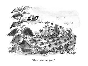 """Here come the pests."" - New Yorker Cartoon by Frank Modell"