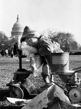 Child Sleeping in Stroller During Celebrations for the Inauguration of Harry S. Truman by Frank Scherschel