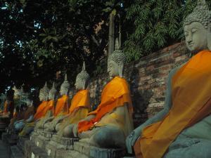 Buddhas, Wat Yai Chai Mongkhon, Ayuthaya, Thailand by Frank Staub