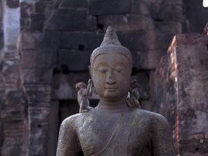 Monkeys on Buddha, Prang Sam Yot, Lopburi, Thailand by Frank Staub