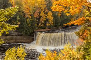 USA, Michigan, Paradise, Tahquamenon Falls State Park, Upper Falls by Frank Zurey