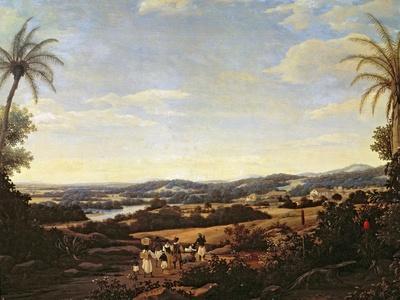 Brazilian Landscape with a Plantation