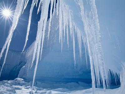 Icicles and Sun, Alta Bay, Antarctica by Frans Lanting