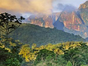 Rainforest and Granite Mountains, Serra Dos Orgaos National Park, Brazil by Frans Lanting