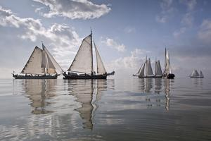Netherlands, Race of Traditional Sailing Ships by Frans Lemmens