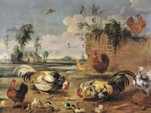 Fight of Cocks by Frans Snyders