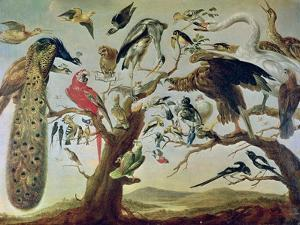 The Bird's Concert by Frans Snyders