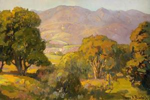 Jeweled Colored Hills by Franz Bischoff