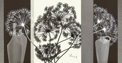Delicate Twigs by Franz Heigl